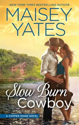 SLOW BURN COWBOY book