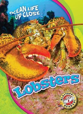 Lobsters by Heather Adamson