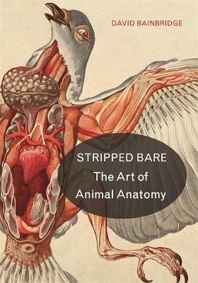 Stripped Bare by David Bainbridge
