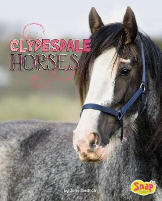 Clydesdale Horses book