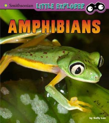 Amphibians by Sally Lee