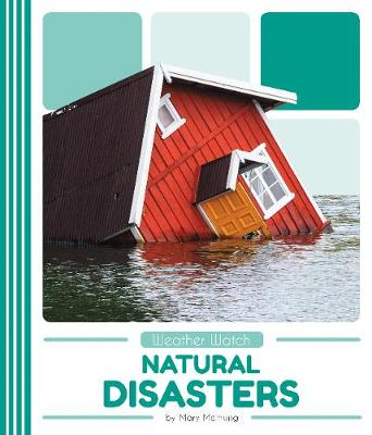 Natural Disasters by Mary Meinking