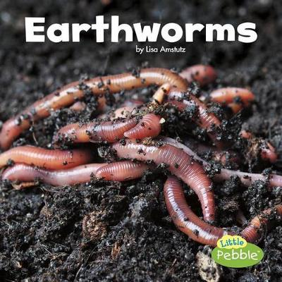 Earthworms by Lisa J Amstutz