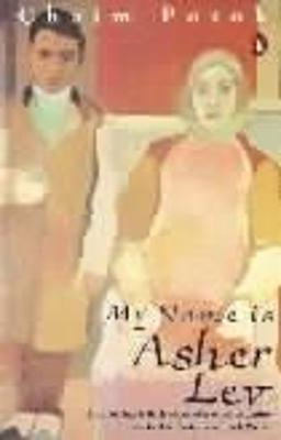 My Name is Asher Lev book