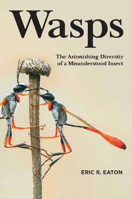 Wasps: The Astonishing Diversity of a Misunderstood Insect by Eric R. Eaton