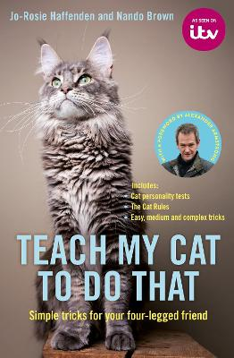 Teach My Cat to Do That by Jo-Rosie Haffenden