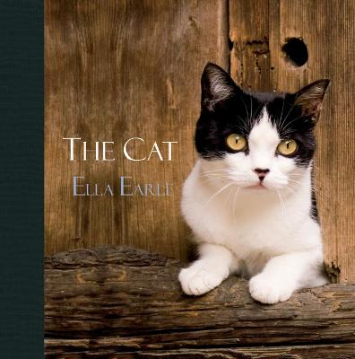 The Cat by Ella Earle