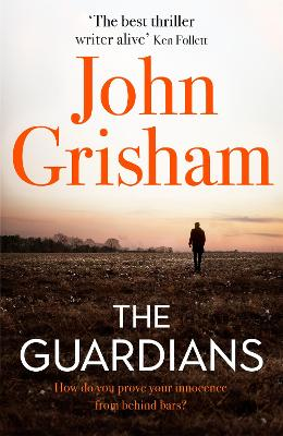 The Guardians: The Sunday Times Bestseller book