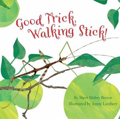 Good Trick Walking Stick by Sheri Mabry Bestor