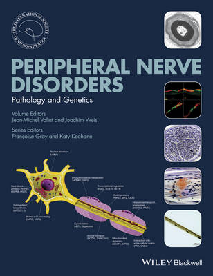 Peripheral Nerve Disorders by Jean-Michel Vallat