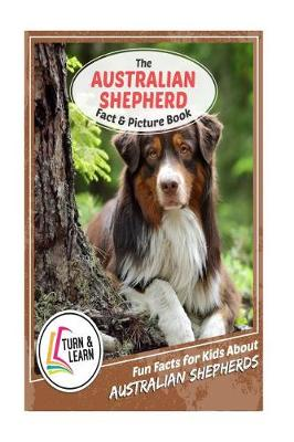 The Australian Shepherd Fact and Picture Book by Gina McIntyre