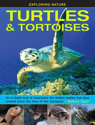 Exploring Nature: Turtles & Tortoises by Barbara Taylor
