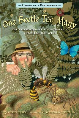 One Beetle Too Many by Lasky Kathryn