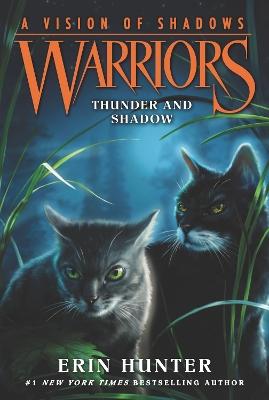 Warriors: A Vision of Shadows #2: Thunder and Shadow book