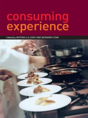 Consuming Experience book