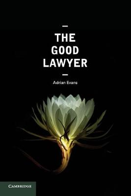 Good Lawyer by Adrian Evans