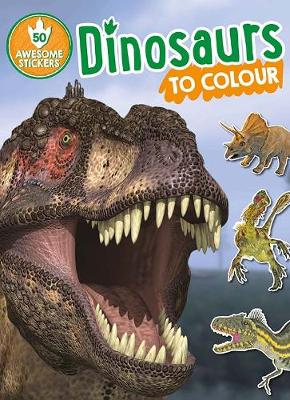 Dinosaurs to Colour book