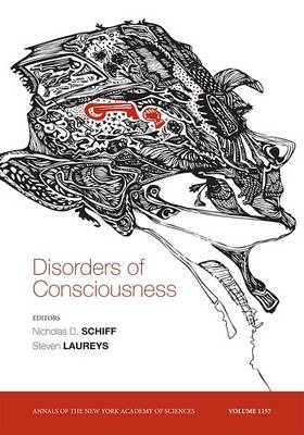 Disorders of Consciousness by Nicholas D. Schiff