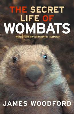 Secret Life Of Wombats by James Woodford