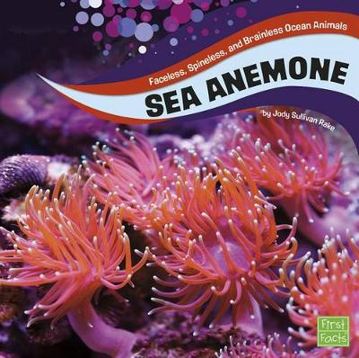 Sea Anemones by Jody S Rake