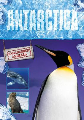 Antarctica by Grace Jones
