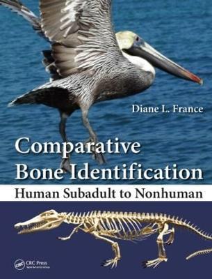 Comparative Bone Identification by Diane L. France