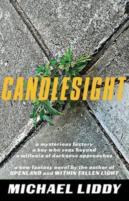 Candlesight by Michael Liddy