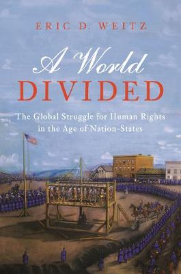 A World Divided: The Global Struggle for Human Rights in the Age of Nation-States by Eric D. Weitz
