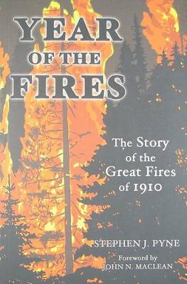 Year of the Fire book