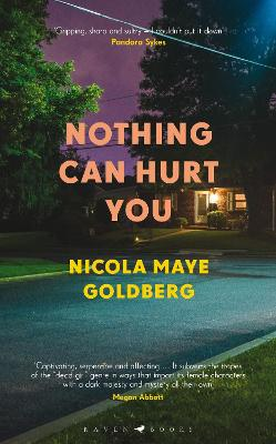Nothing Can Hurt You book
