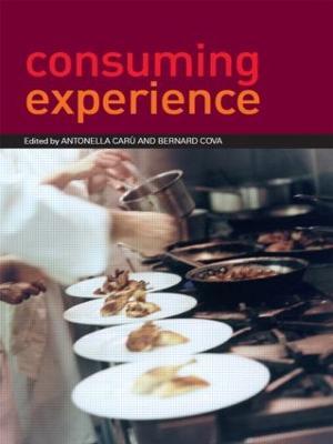 Consuming Experience by Antonella Caru