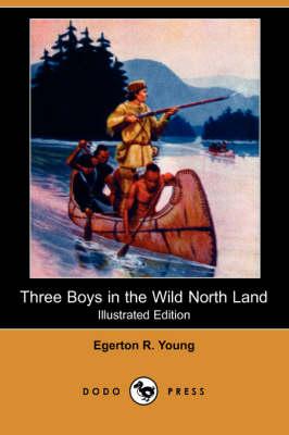 Three Boys in the Wild North Land (Illustrated Edition) (Dodo Press) book