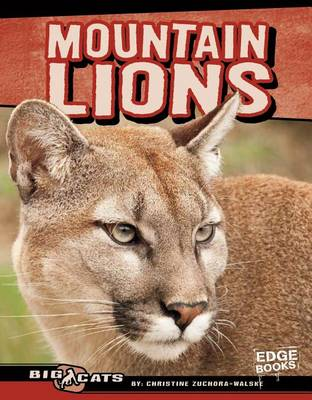 Mountain Lions by Christine Zuchora-Walske