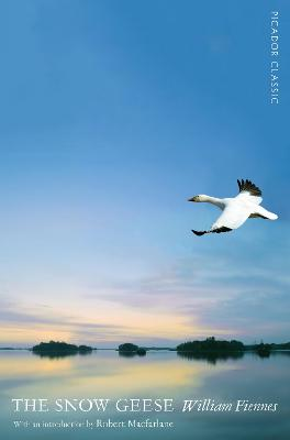 The Snow Geese by William Fiennes