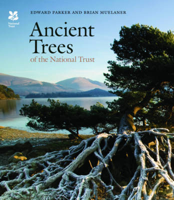 Ancient Trees of the National Trust by Edward Parker