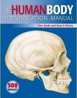 The Human Body Identification Manual by Ken Ashwell