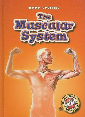 The Muscular System by Kay Manolis