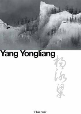 Yang Yongliang: New Landscapes by David Rosenberg