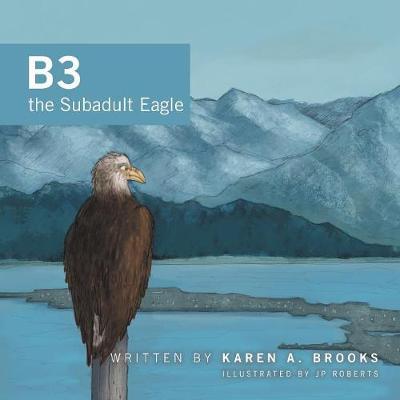 B3 the Subadult Eagle by Karen A Brooks