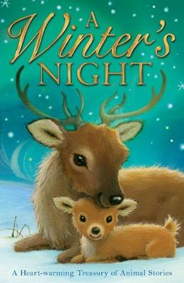 Winter's Night by Alison Edgson