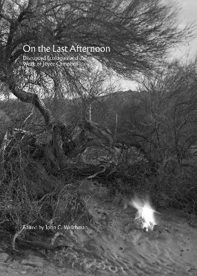 On the Last Afternoon: Disrupted Ecologies and the Work of Joyce Campbell by John C. Welchman