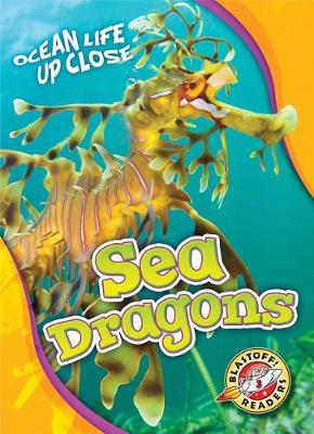 Sea Dragons by Heather Adamson