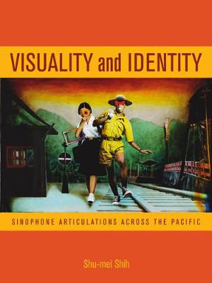 Visuality and Identity book