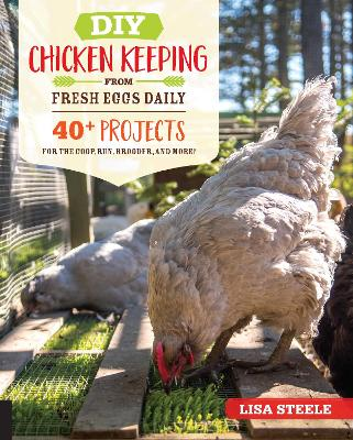 DIY Chicken Keeping from Fresh Eggs Daily: 40+ Projects for the Coop, Run, Brooder, and More! by Lisa Steele