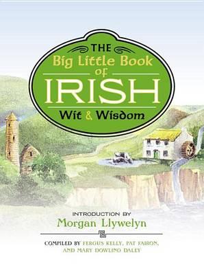 Big Little Book of Irish Wit & Wisdom by Morgan Llywelyn