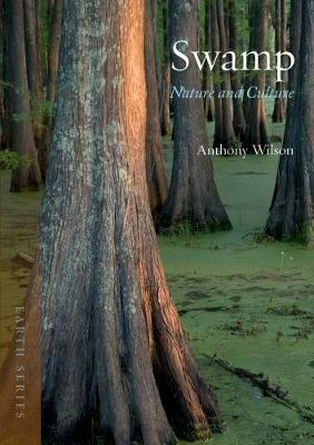 Swamp by Anthony Wilson