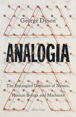 Analogia: The Entangled Destinies of Nature, Human Beings and Machines book