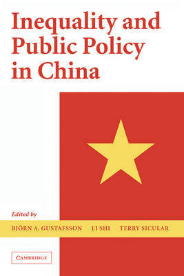 Inequality and Public Policy in China book