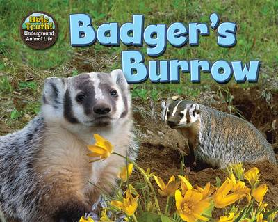 Badger's Burrow by Dee Phillips
