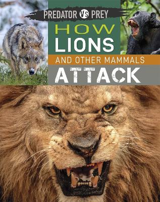 Predator vs Prey: How Lions and other Mammals Attack by Tim Harris